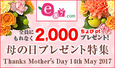 e87.comで2,000ちょびpt