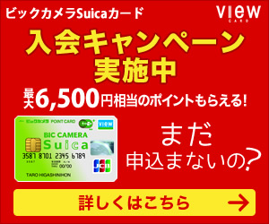 ドットマネー増量キャンペーン対象カードです♪