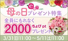 『イイハナ・ドットコム(e87.com)もれなく2,000ptキャンペーン』開催【〜5/11(土)11:00】